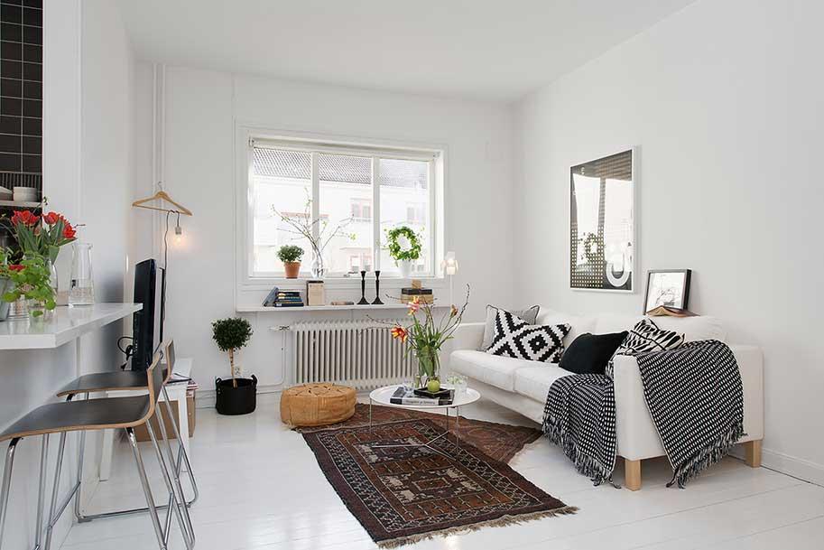 skandinavian-livingroom-foto15