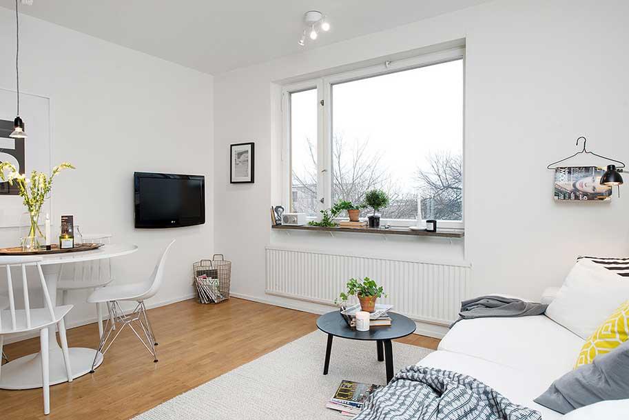 skandinavian-livingroom-foto30